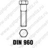 DIN 960